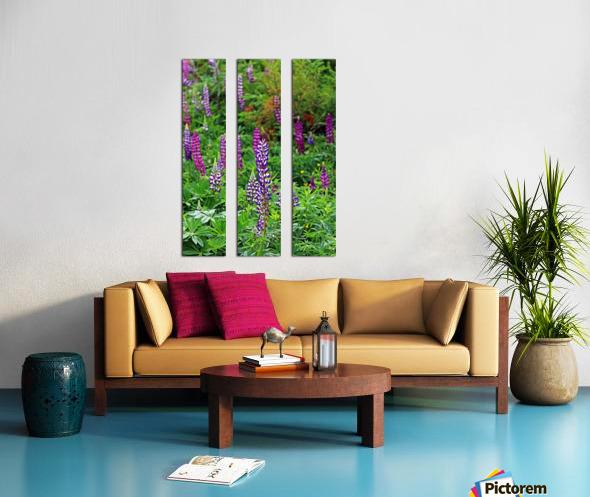 Shades Of Purple Lupine Split Canvas print