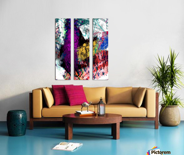Sumthing Split Canvas print