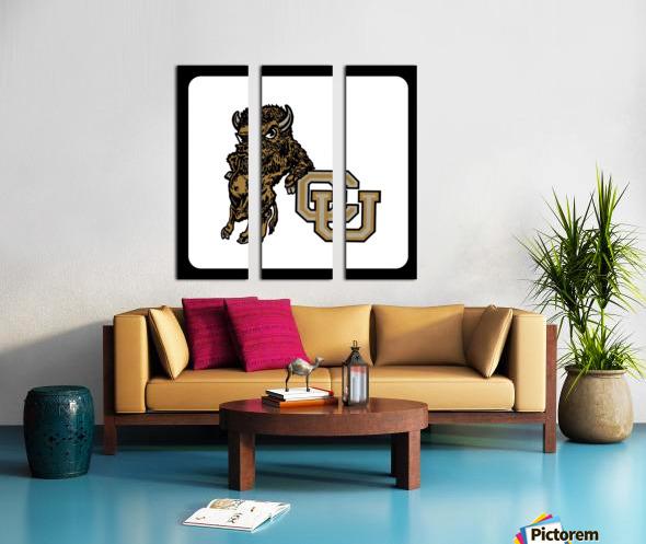vintage college mascots colorado buffalo art Split Canvas print