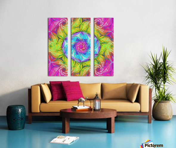 Spirals Kaleidoscope Ciclamen Lame Split Canvas print