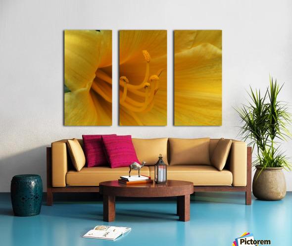 Pistil Split Canvas print