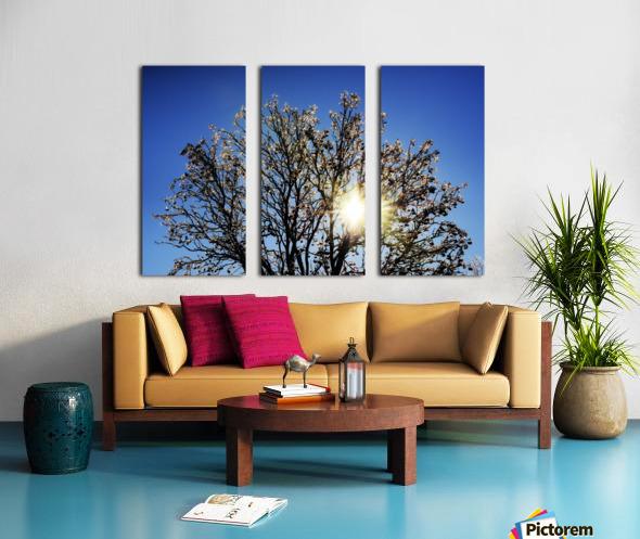 Eblouissant Split Canvas print