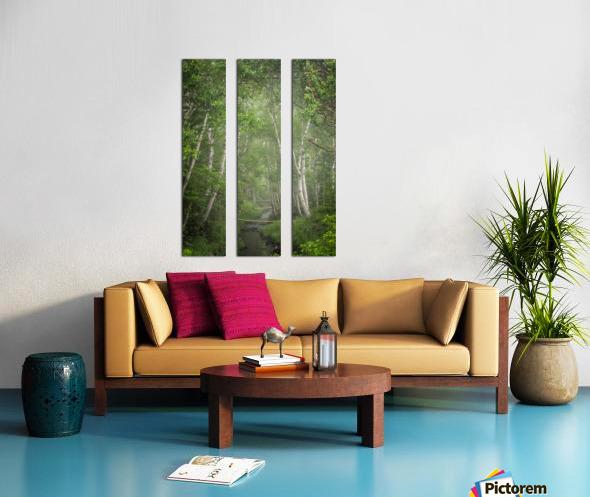 Enchanted Split Canvas print
