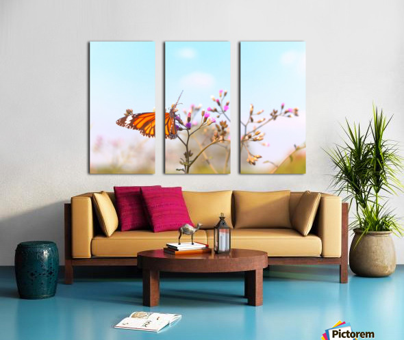 Fluttering Butterfly Split Canvas print