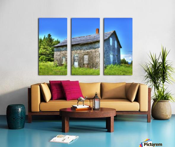 Toit bleu Split Canvas print