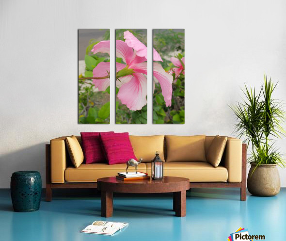Hibiscus Split Canvas print