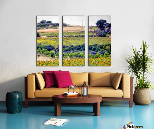 Sunflower Landscape Split Canvas print