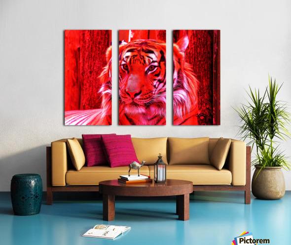 Rare Red Tiger Split Canvas print