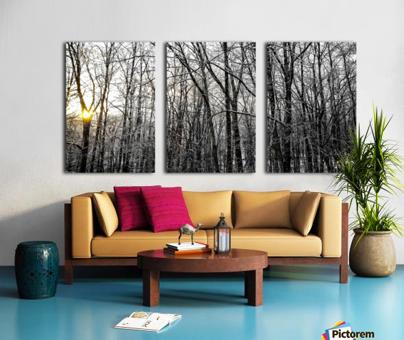 Through the Icy Trees Split Canvas print