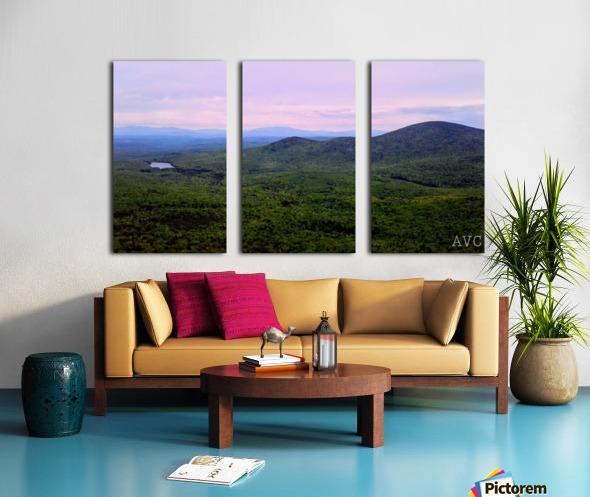 Spruce Mountain Split Canvas print