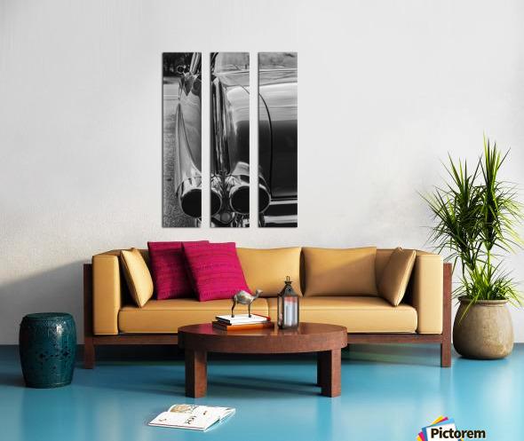 Chrome Sharkfin Split Canvas print