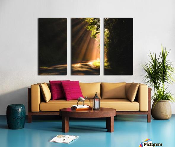 Morning Rays Split Canvas print