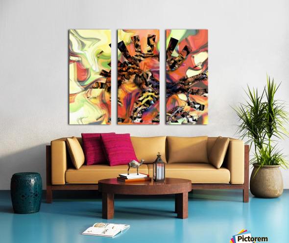 56C9BCF2 1E55 42ED 9DFA 53EC052561AA Split Canvas print