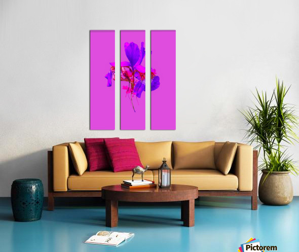 2AA2B863 A8C5 4C62 A0DE DBF9CE5B7B4E Split Canvas print