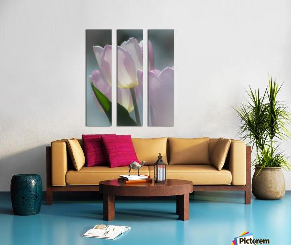 Pale Pink Tulips Split Canvas print