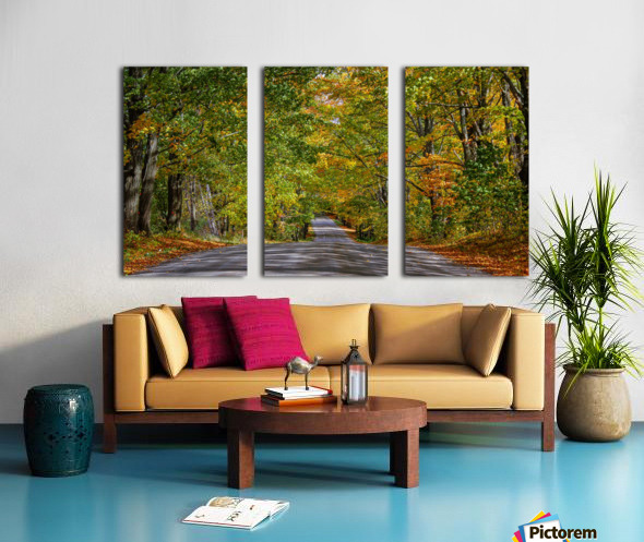 Fall Colors over a Country Road Split Canvas print