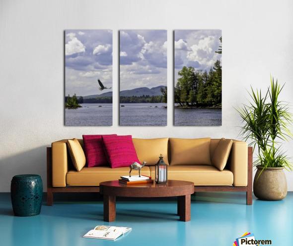 Eagle on Lake Split Canvas print