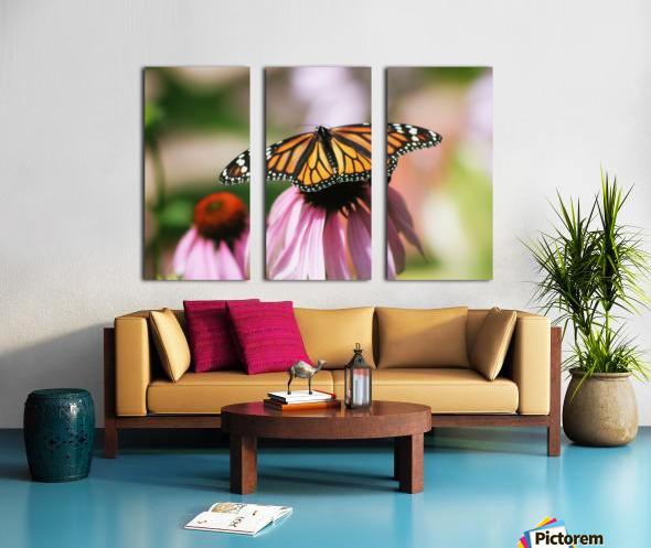 Closeup Butterfly on Cone Flower Split Canvas print