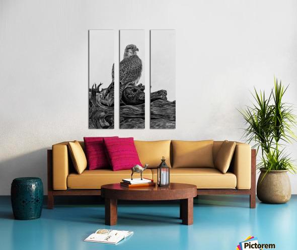 Gyrfalcon Split Canvas print