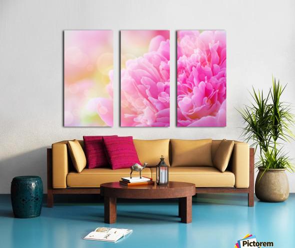 Pink Dream Split Canvas print