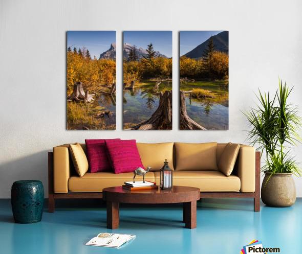 Vermilion Lakes Pond IMG_7045  Split Canvas print