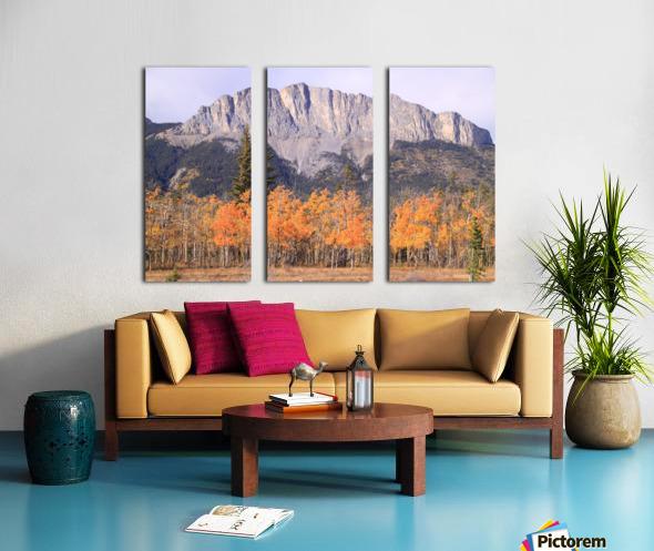 Yamnuska In Fall IMG_3238_1  Split Canvas print