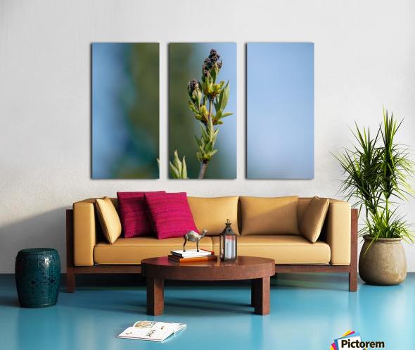 Wild Flowers 3 Split Canvas print