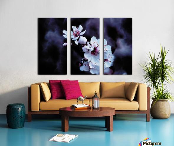 Night Flowers Split Canvas print