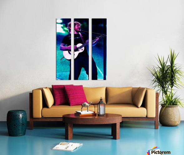 edsheeran Split Canvas print