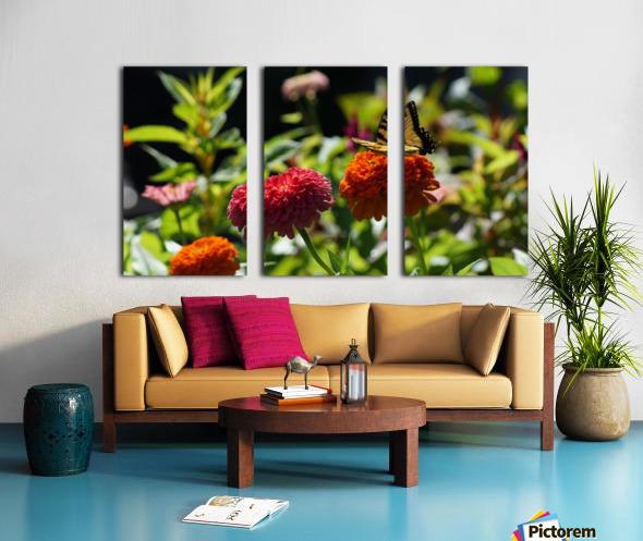 Gorgeous Flower Color Split Canvas print