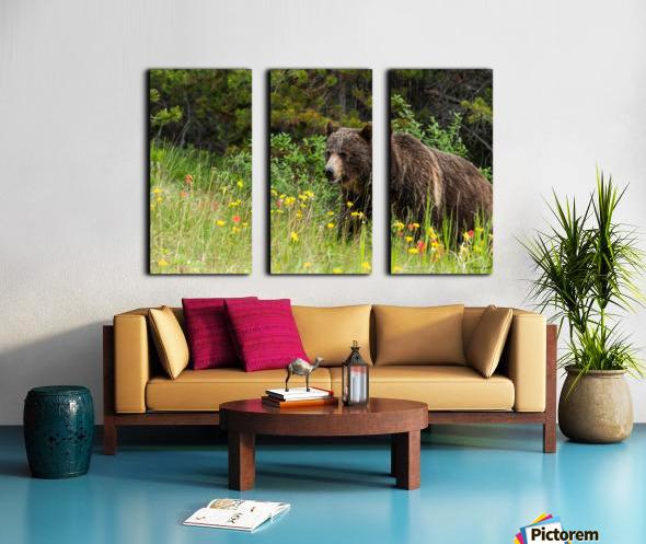 Grizzly Bear Sow 142  IMG_5130 Split Canvas print