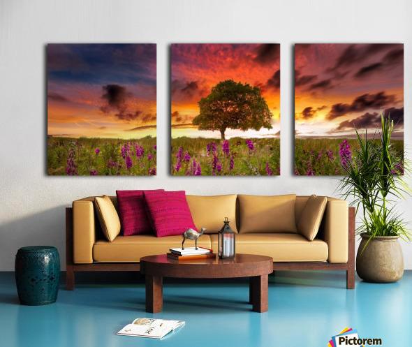 Foxgloves at sunset Split Canvas print