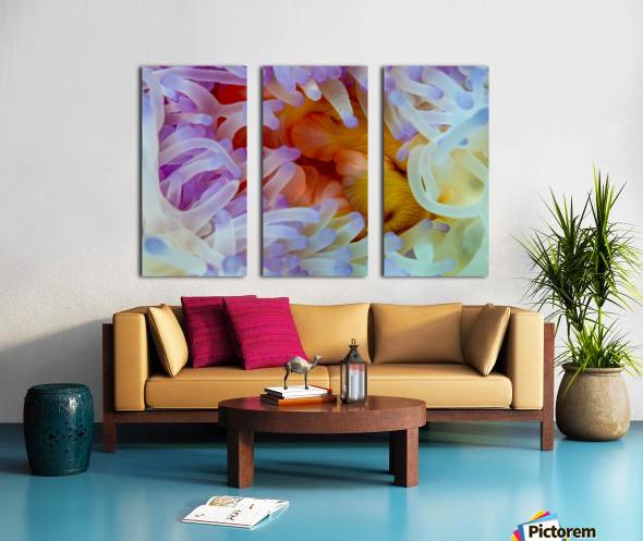 Sea Anemone 5 Split Canvas print
