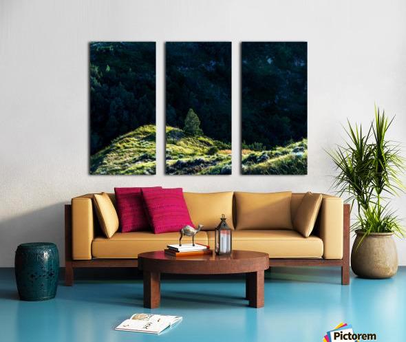 Lonesome Tree Split Canvas print
