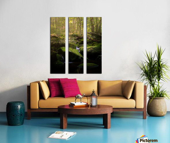 From afar what holds you near Split Canvas print