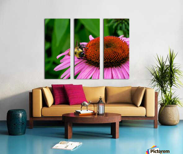 Bee Split Canvas print