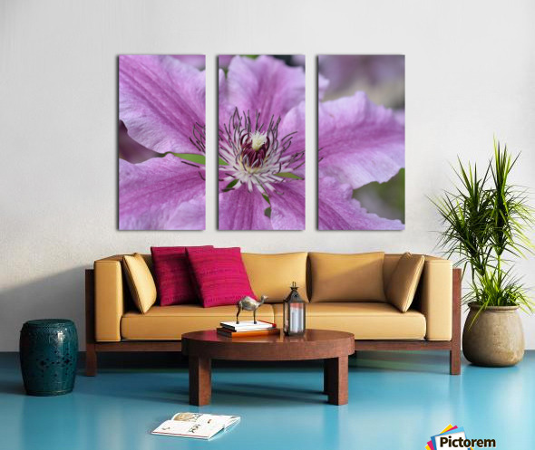 Pink Floral Photograph Split Canvas print