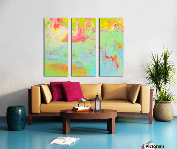 Ns 2 Split Canvas print