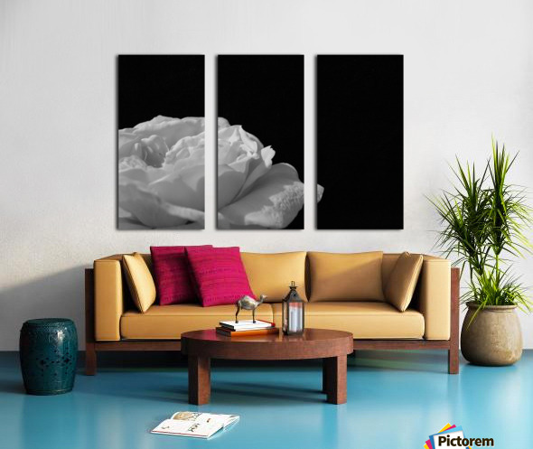 Still Split Canvas print