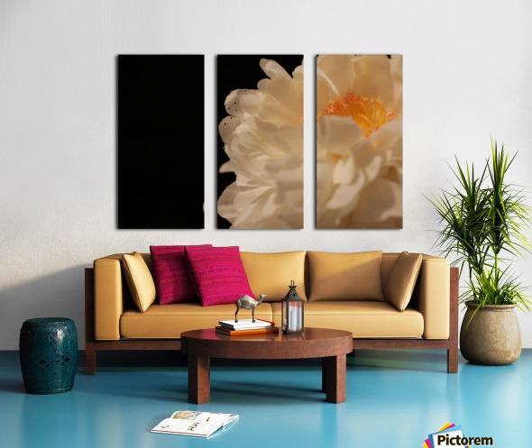 Anther Split Canvas print