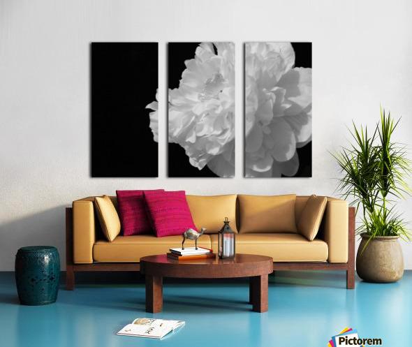 Stigma Split Canvas print