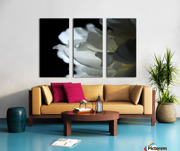 Closer Split Canvas print