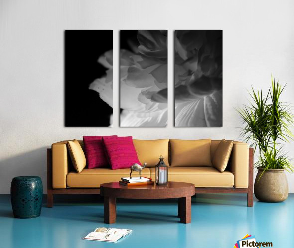 Shadow Split Canvas print