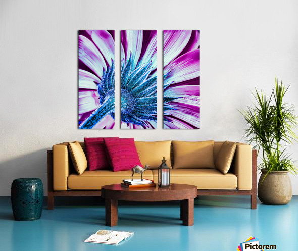 Back Brilliant Pink Split Canvas print