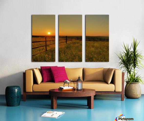 Cattle Pens Morning Sunburst Split Canvas print