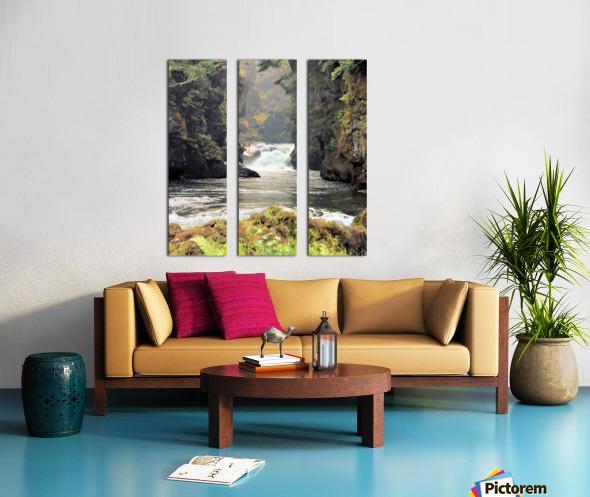 Rogue River Canyon Split Canvas print