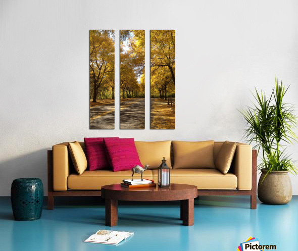 Autumn on Olivers End Split Canvas print