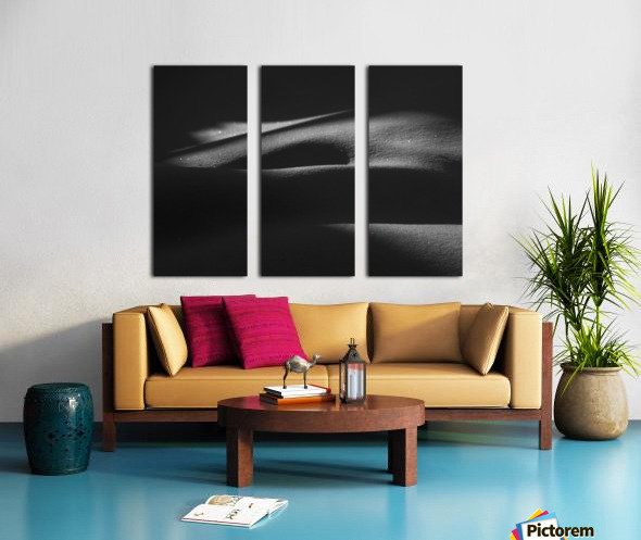 ombres dans la neige Split Canvas print