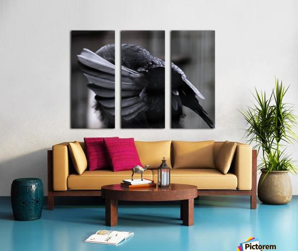 La corneille Split Canvas print