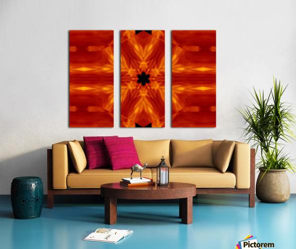 Fire Flowers 62 Split Canvas print